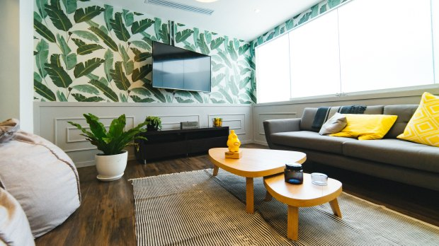A room with palm print wallpaper, bean bag chairs, a couch, coffee table, rug, and tv at Communal